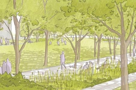 Kto zaprojektuje park przy Górce Kazurce?