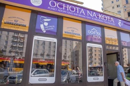 Warszawa. Czworonogi z Ochoty na Kota liczą na głosy.